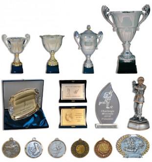 Coupes médailles et trophées - Devis sur Techni-Contact.com - 1