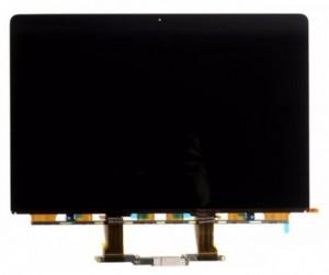 Dalle écran LCD Retina 13'' - Devis sur Techni-Contact.com - 1