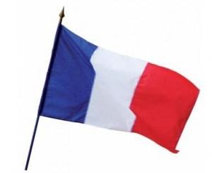 Drapeaux sur hampe France - Devis sur Techni-Contact.com - 1