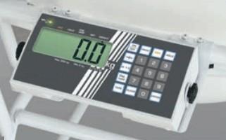 Fauteuil de pesée homologué - Devis sur Techni-Contact.com - 2