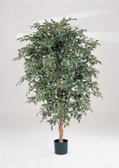 Ficus folia artificiel - Devis sur Techni-Contact.com - 1