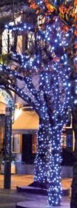 Guirlande lumineuse LED professionnelle - Lumière fixe - Devis sur Techni-Contact.com - 2