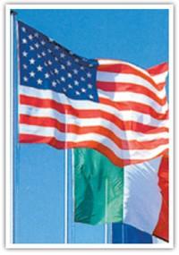Mât de drapeau officiel - Devis sur Techni-Contact.com - 1