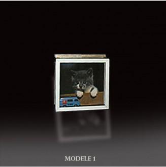 Mini vitrine murale - Devis sur Techni-Contact.com - 1