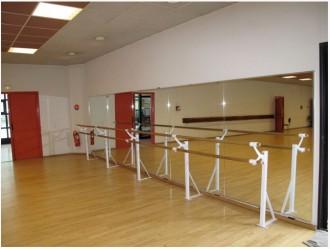 Miroir plat pour salle de danse - Devis sur Techni-Contact.com - 2