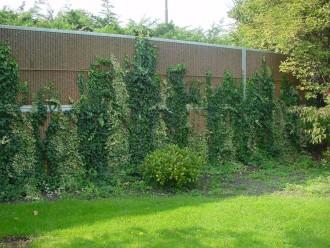 Mur anti bruit végétalisable - Devis sur Techni-Contact.com - 11