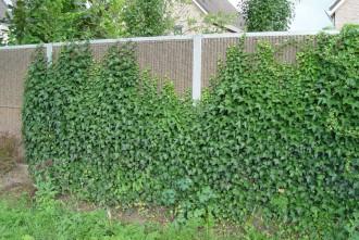 Mur anti bruit végétalisable - Devis sur Techni-Contact.com - 8