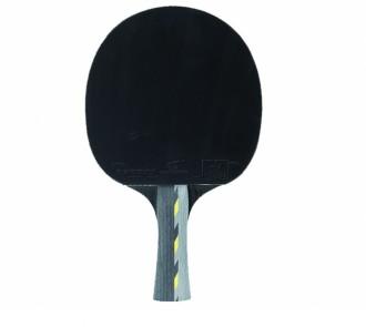 Pack raquette ping pong avec CD d'apprentissage - Devis sur Techni-Contact.com - 3
