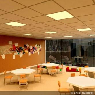 Panneaux LED Bureau - Devis sur Techni-Contact.com - 1