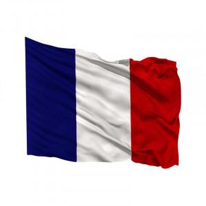 Pavillon pays France - Devis sur Techni-Contact.com - 1