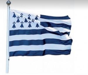 Pavillons et drapeaux des régions françaises - Devis sur Techni-Contact.com - 1