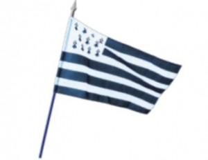 Pavillons et drapeaux des régions françaises - Devis sur Techni-Contact.com - 2