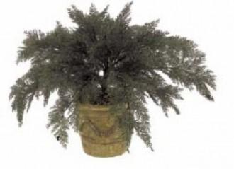 Plante artificielle d'extérieur juniperus - Devis sur Techni-Contact.com - 1