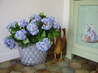 Plante fleurie hortensia - Devis sur Techni-Contact.com - 1