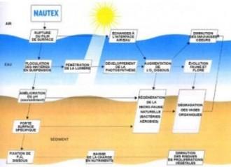 Produit d'entretien de plan d'eau - Devis sur Techni-Contact.com - 1