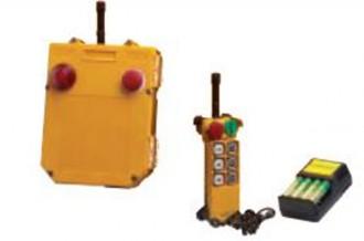 Radiocommande pour palan électrique - Devis sur Techni-Contact.com - 2