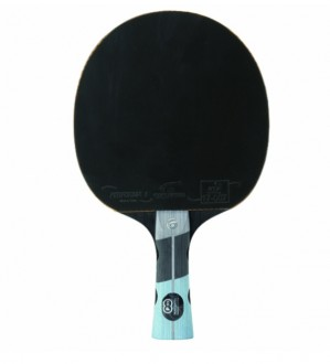 Raquette de tennis de table familliale - Devis sur Techni-Contact.com - 3