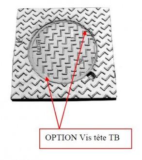 Regard en fonte de trottoir C 250 - Devis sur Techni-Contact.com - 1