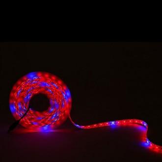 Ruban LED - Devis sur Techni-Contact.com - 1