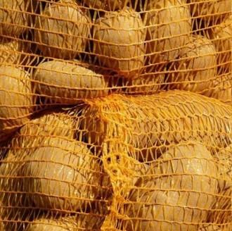 Sac filet pour pommes de terre - Devis sur Techni-Contact.com - 1