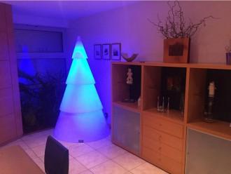 Sapin lumineux en polyéthylène - Devis sur Techni-Contact.com - 1