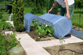 Serre de jardin - Devis sur Techni-Contact.com - 2