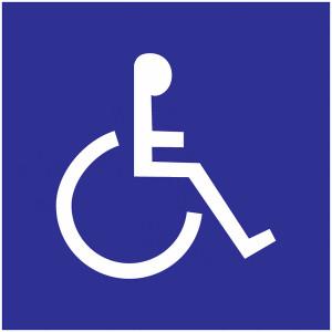 Signalétiques handicap - Devis sur Techni-Contact.com - 2