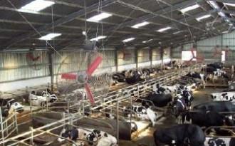 Système de ventilation pour étables laitières - Devis sur Techni-Contact.com - 2
