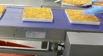 Tapis de transport alimentaire à courroies - Devis sur Techni-Contact.com - 2