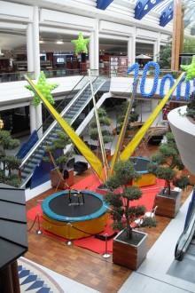 Trampoline pour parc d'attraction - Devis sur Techni-Contact.com - 6