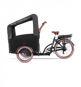 Tricycle cargo enfants - Devis sur Techni-Contact.com - 1