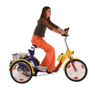 Tricycles pour adolescents ou adultes de petite taille - Devis sur Techni-Contact.com - 1