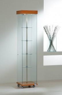 Vitrine d'exposition étroite verre - Devis sur Techni-Contact.com - 1