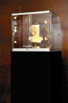 Vitrine d'exposition pour musée - Devis sur Techni-Contact.com - 1
