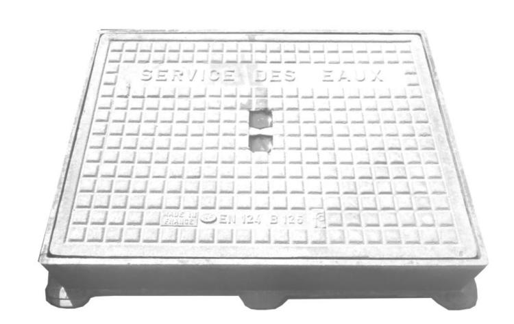 Étonnant Regard compteur d'eau - Protection compteur d'eau - Techni-Contact OQ-21
